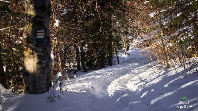 Miejscami jest trochę więcej śniegu, ale szlak jest doskonale przetarty