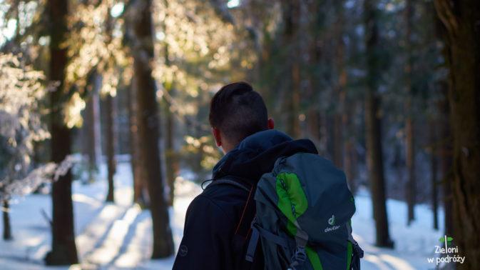 Zimowy las i moja duża głowa