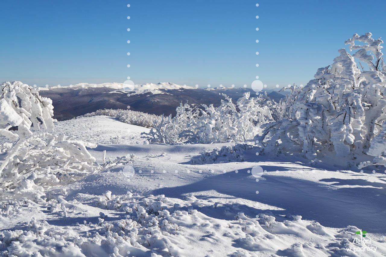 Zimowe, lodowe formy z widokiem na Tarnicę