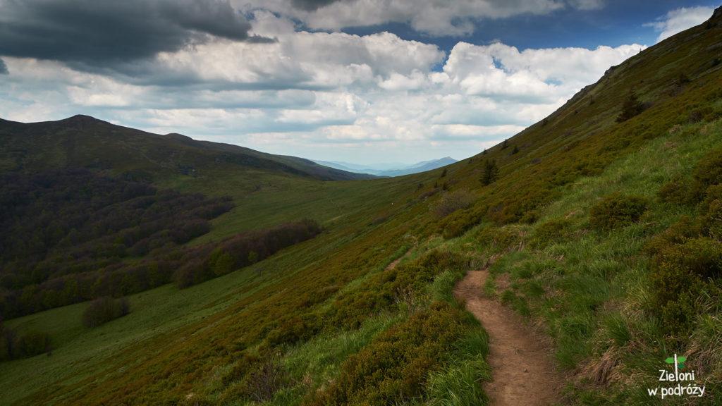 Ścieżka prowadzi nas już wprost na Przełęcz Goprowską