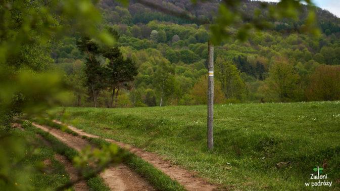 Żółte oznaczenia prowadzić mnie będą aż na Przełęcz Orłowicza