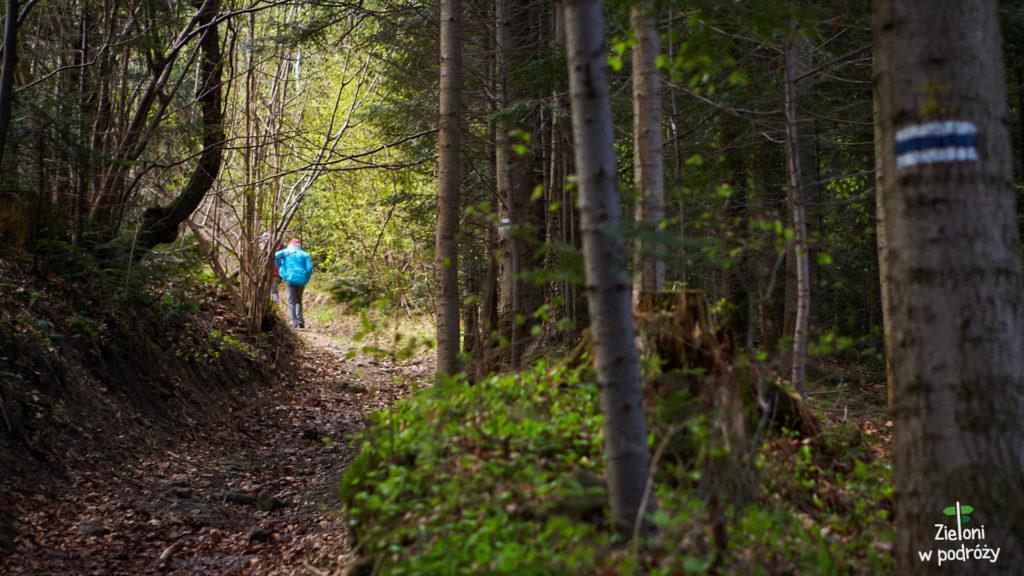Po chwili weszliśmy do lasu