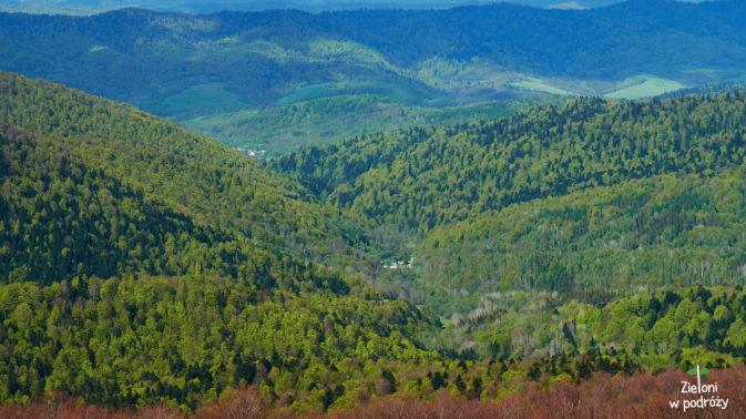 W dolinach już wyjątkowo zielono