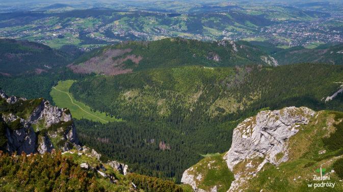 Dolina Małej Łąki oglądana z podejścia na Małołączniak. Widać Wielką Polanę