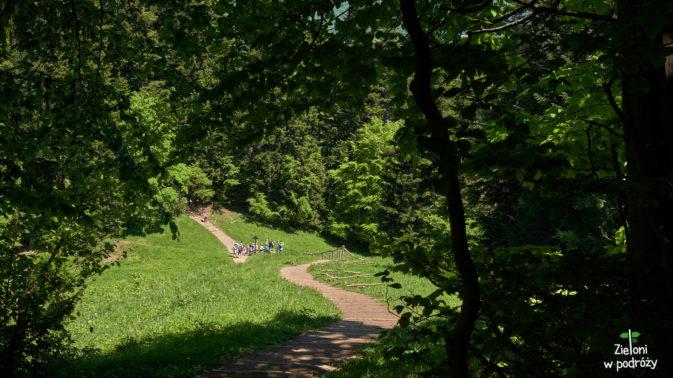 Na polanie odbijemy na zielony szlak i w taki sposób zejdziemy do Sromowiec Niżnych