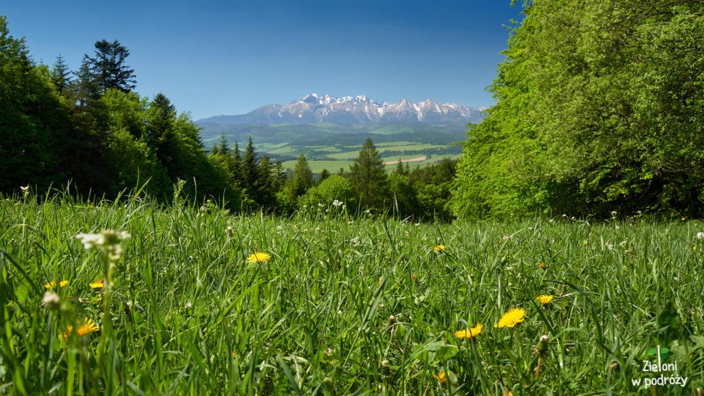 Tatry z Przełęczy Szopka. Naprawdę piękne miejsce zwłaszcza wiosną