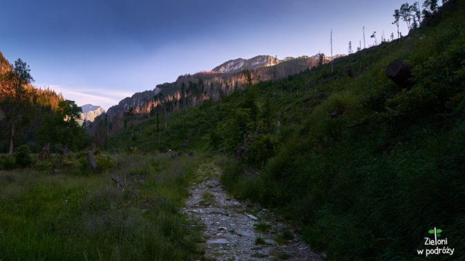 Ten szlak prowadzi do Doliny Lejowej. Nie tym razem