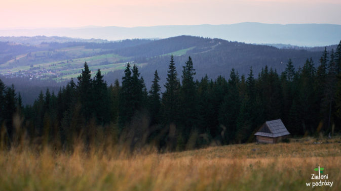 Ostatnie, wieczorne widoki na polanie. Pora wracać