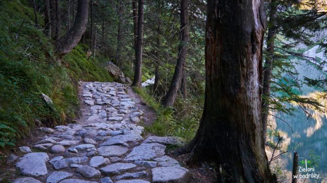 Ścieżka wzdłuż stawu