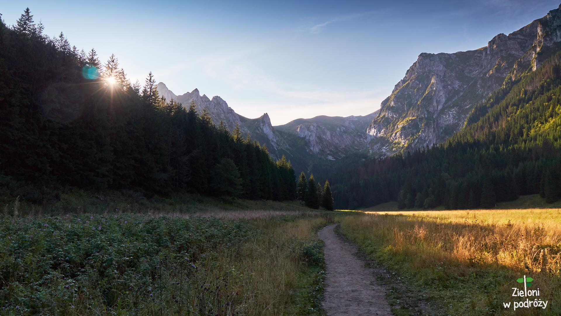 Dolina Małej Łąki o poranku