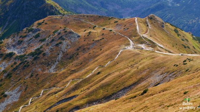 Szlak prowadzący na Przełęcz pod Kopą Kondracką
