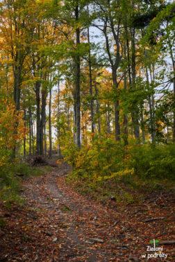 Jesień w Górach Opawskich