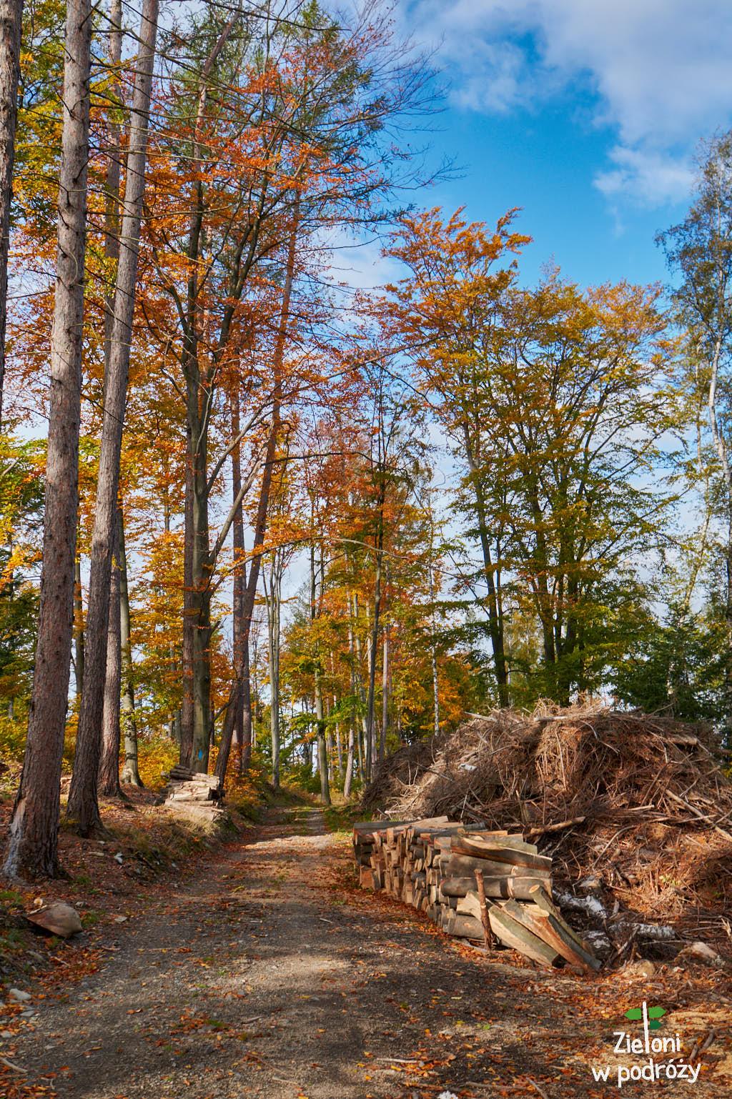 Kolory jesieni w Górach Opawskich
