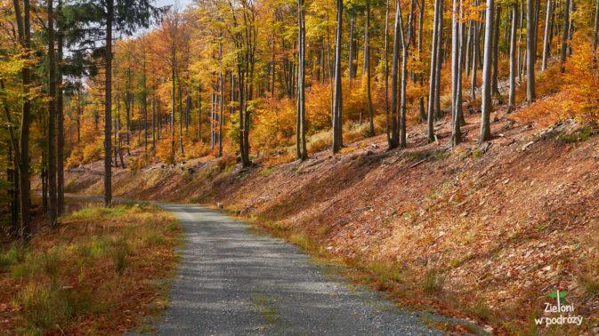 Jesień w Górach Bystrzyckich