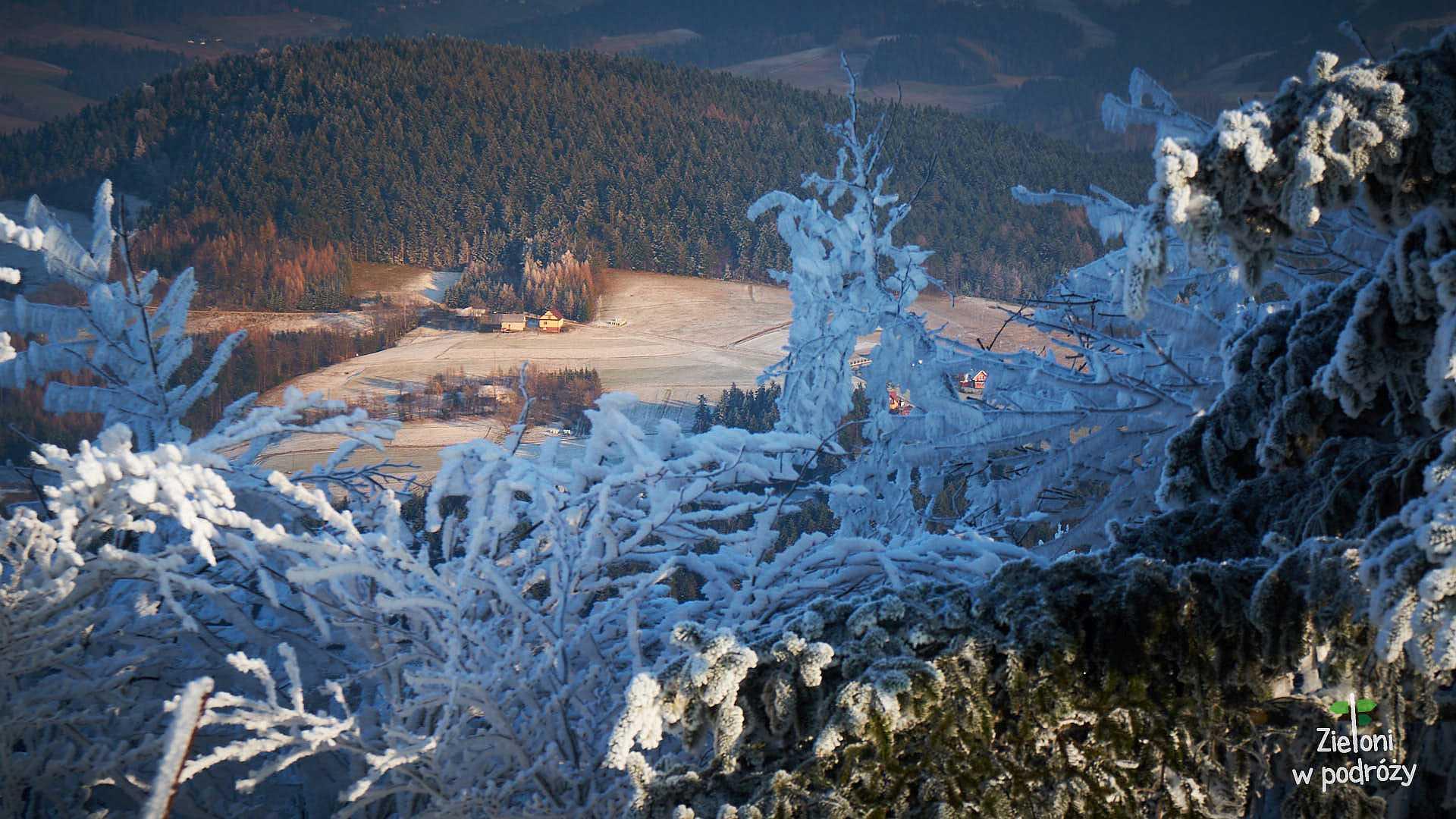 Zimowy spacer na Jaworze