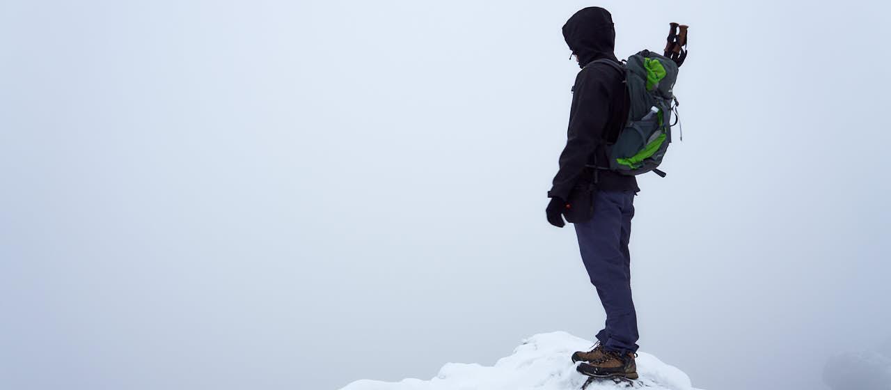 Nosal zimą