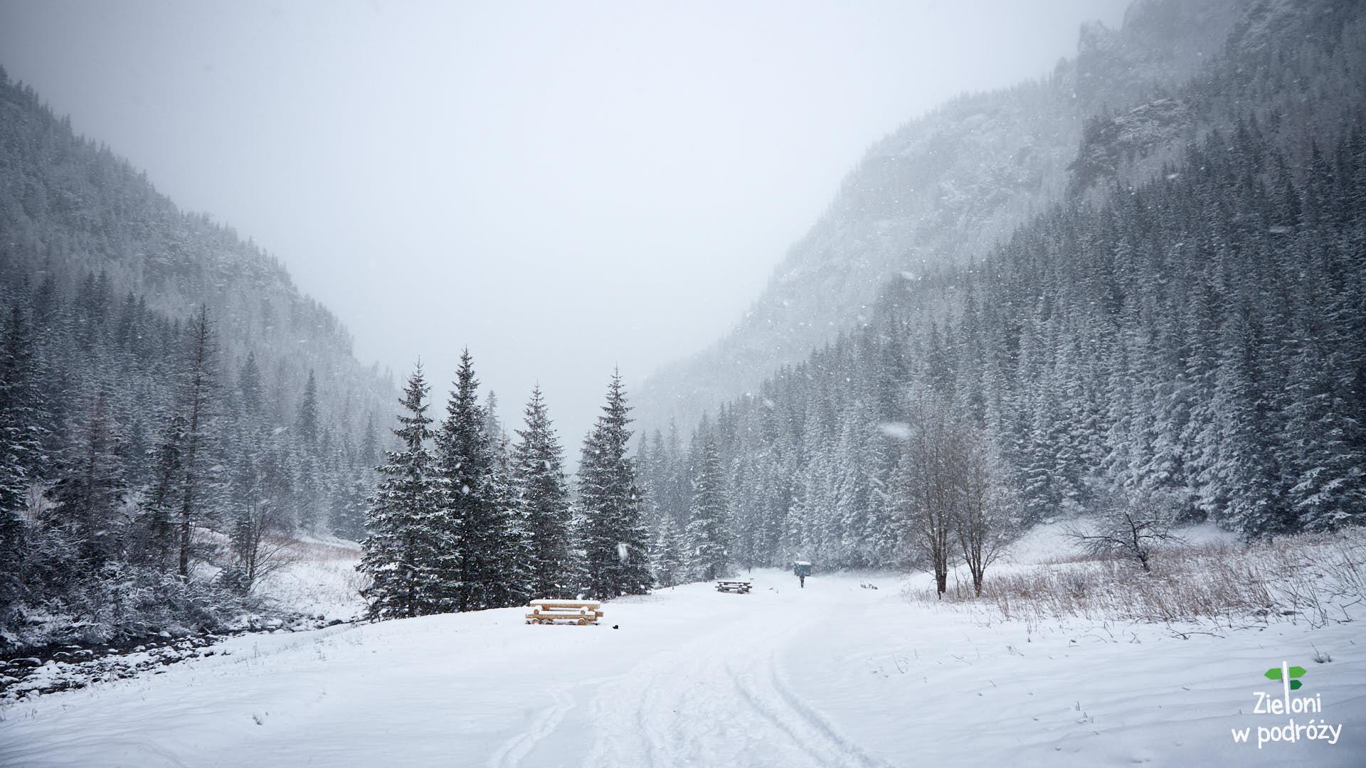 Dolina Kościeliska i Smreczyński Staw zimą