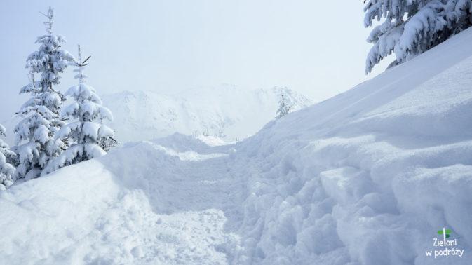 Sporo śniegu, ale idzie się przyjemnie