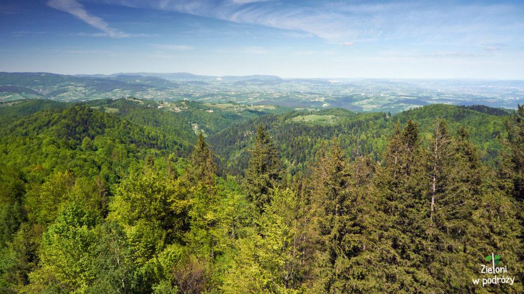 Panorama z wieży na Koziarzu