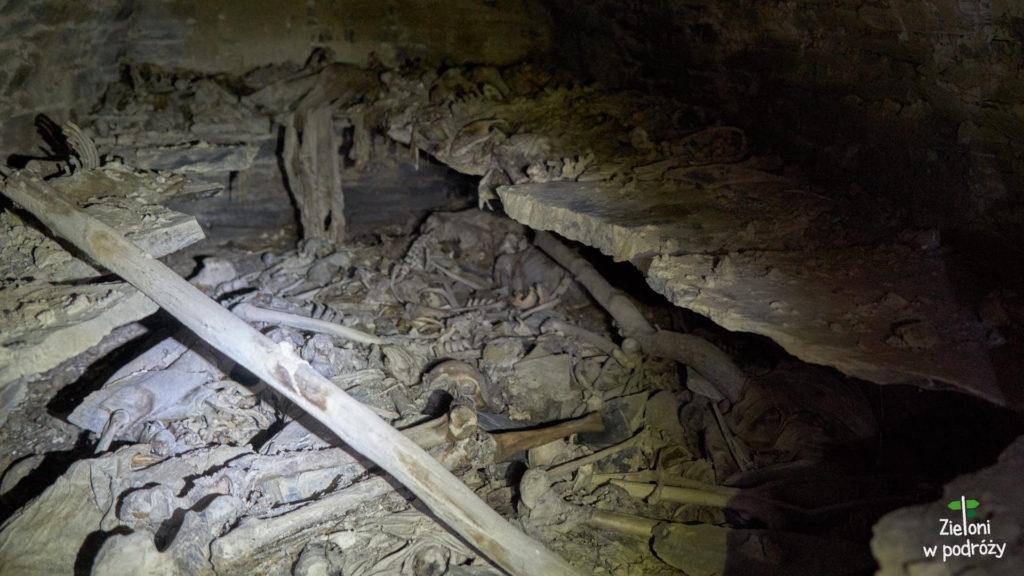 Anatori i szczątki zmarłych