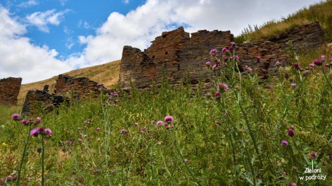 Pozostałości wioski