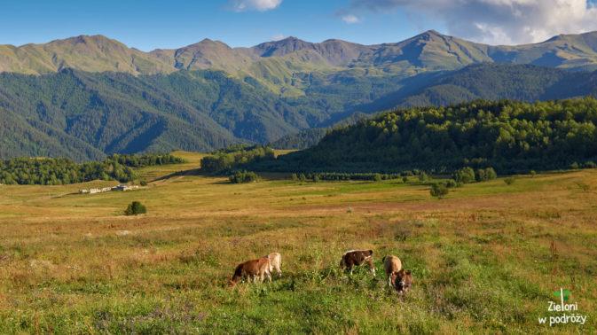 Sielanka. Góry w tle przekraczają 3000 metrów