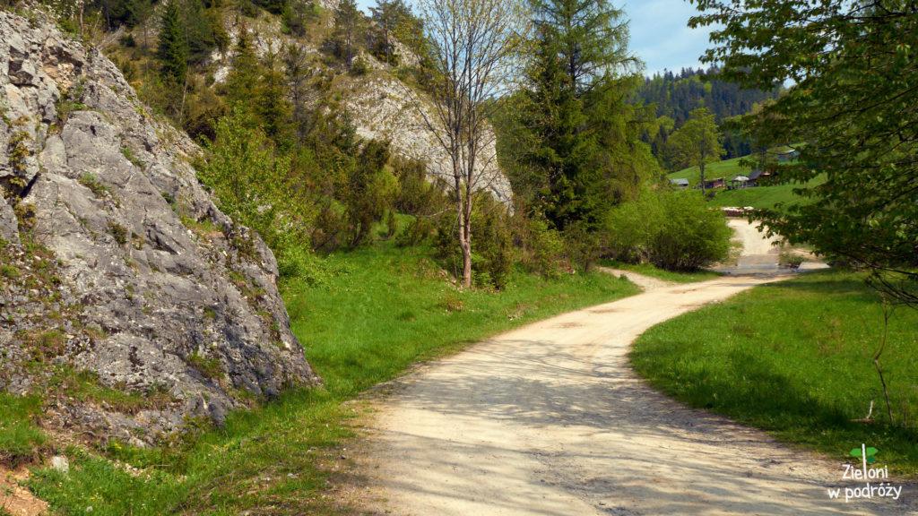Ścieżka prowadząca przez rezerwat