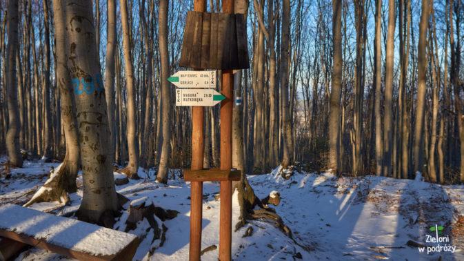 Skrzyżowanie szlaków. Tutaj nalezy wybrać oznaczenia zielone w stronę Magury Wątkowskiej