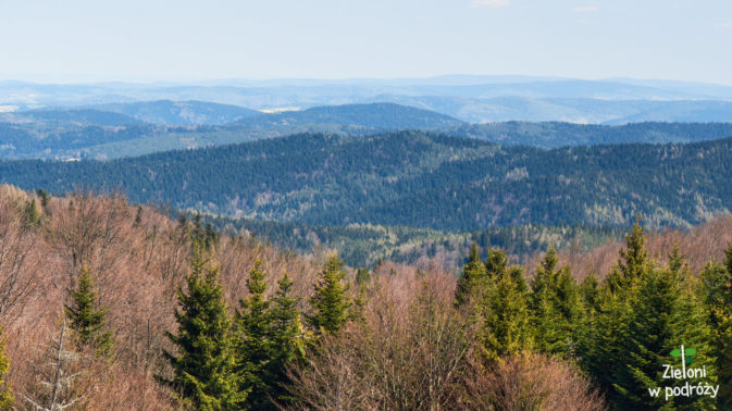 Widoki na północ z Hali Łabowskiej