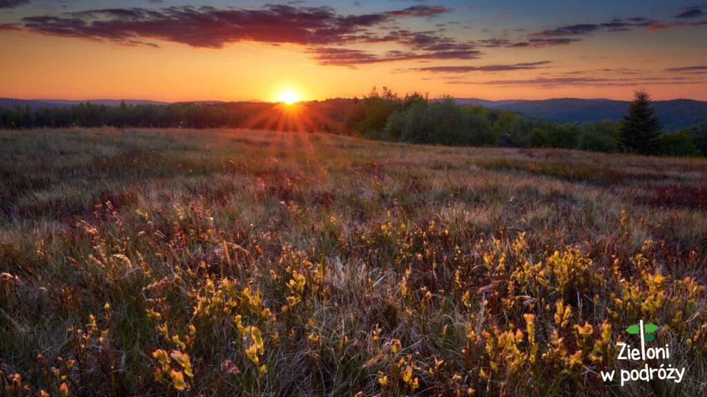 Wysokie i zachód słońca na szczycie