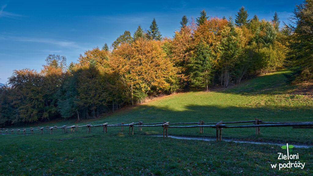 Jesień na Przełęczy Szopka