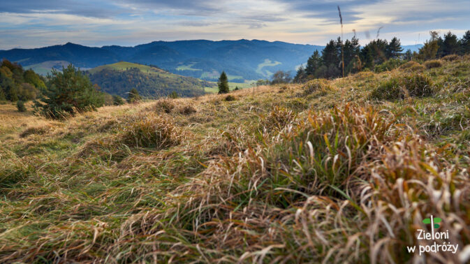 Niby się przejaśnia, ale nie nad Tatrami