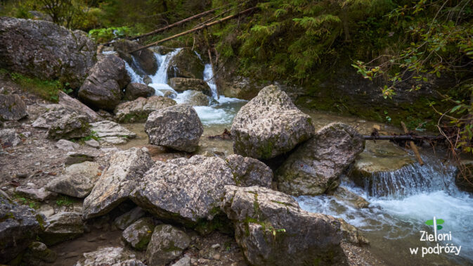 Potok Kamionka