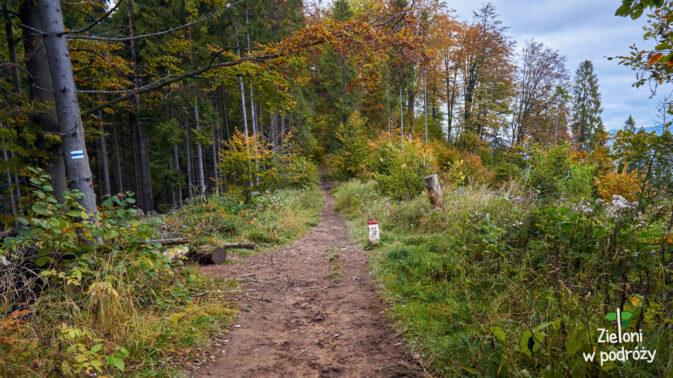 Taką ścieżką zmierzamy w stronę Durbaszki