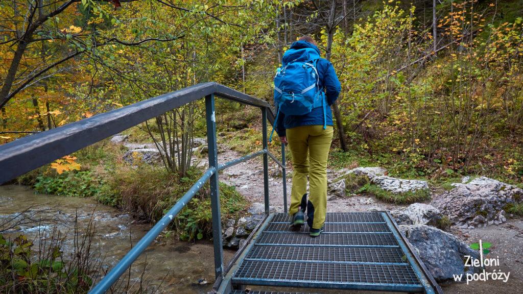 Liczne mostki w Wąwozie Homole