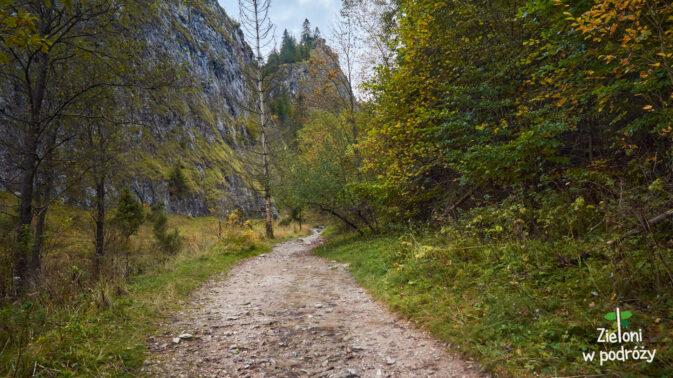 Wąwóz Homole i wyniosłe skały w oddali