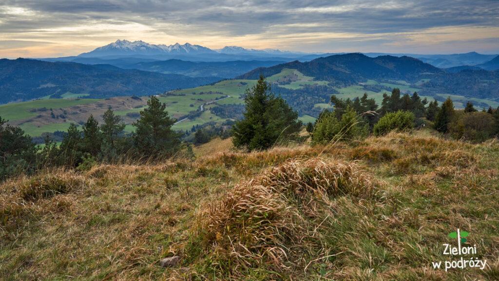 Wysoki Wierch i widok ze szczytu