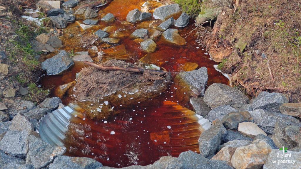 Woda o ciekawym zabarwieniu